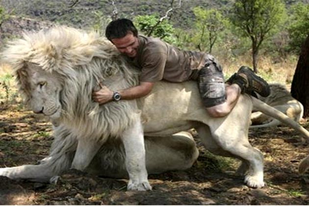 अजब गजब शेर