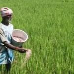 भू – अध्यादेश,किसान और भारत सरकार
