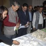 राज्य में मशरूम उत्पादन को सरकार देगी बढ़ावा