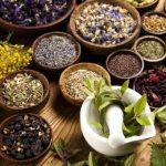 जड़ी-बूटी एवं चाय के कृषिकरण से रोका जाएगा पलायन