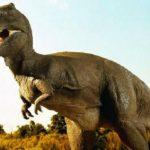 जरा हटके : डायनासोर की उत्पत्ति को लेकर वैज्ञानिकों ने किया खुलासा