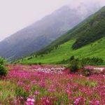 सैलानीयो के लिए खुली फूलों की घाटी, जानिए खबर