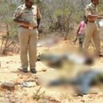 हैदराबाद : एनकाउंटर में मारे गये चारो बलात्कारी