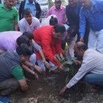 बच्चों के जन्म एवं विवाह पर पौधे अवश्य लगाए :  वन मंत्री हरक सिंह