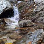 जरा हटके : अप्रैल में भी बह रहे हैं मार्च में सूखने वाले जलस्रोत